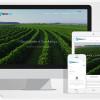 Criação de site para Surita Cafe / Varginha
